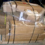 Epidendio-chassis-039-lg